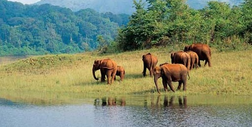 Important Tourist Places in North India